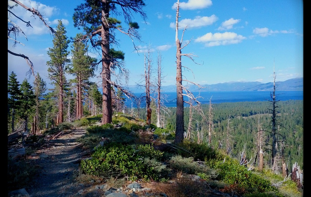 Lake Tahoe Marathon Weekend